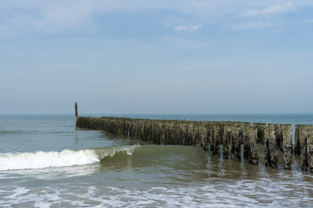 Timber Piles resisting to North Sea Waves Netherlands Stock Photo
