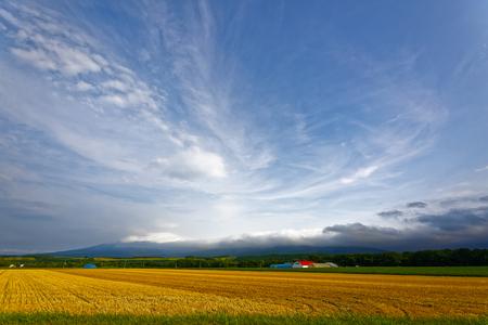 Hokkaido summer sky
