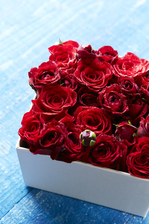 red gift box: Roses in box Stock Photo