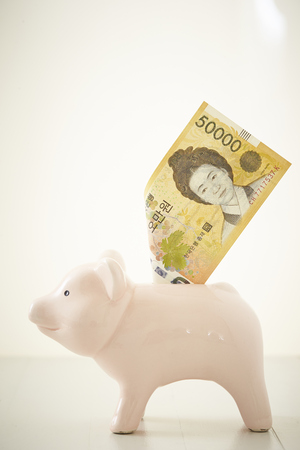 Piggy bank with Korean won banknote
