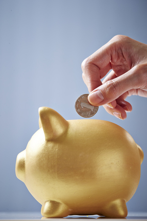 Putting coin in piggy bank