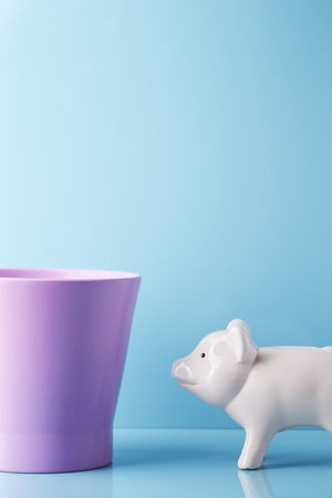 Piggy bank with rubbish bin