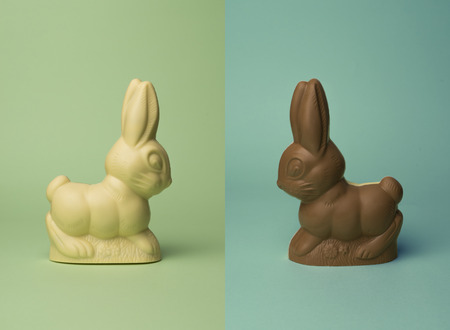 chocolate rabbit isolated on colored background Reklamní fotografie - 97631596