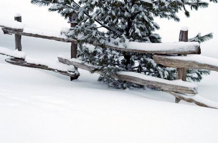 split rail: Split-rail cedar fence in snowy Ontario field. Stock Photo