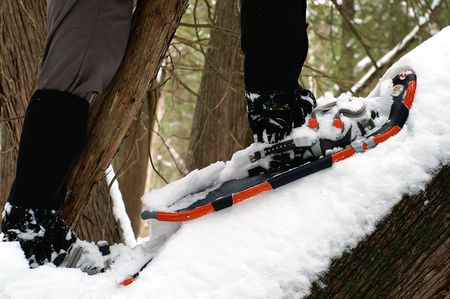 gaiters: Snowshoes with aggressive cleats can climb just about anything including a fallen tree.