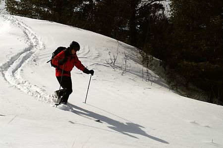 Carving sweet telemark turns in virgin powder and complete solitude. Stock Photo