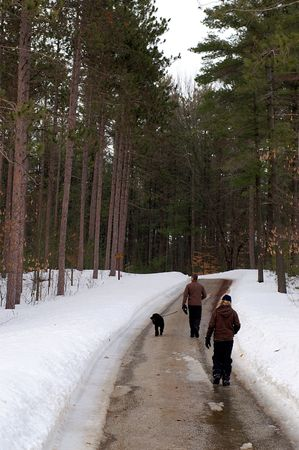snowbanks: Man, boy and dog out for an afternoon walk along a snowy road through a pine plantation.