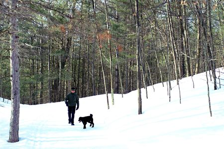 Out with the dog on a winters walk through the forest. photo