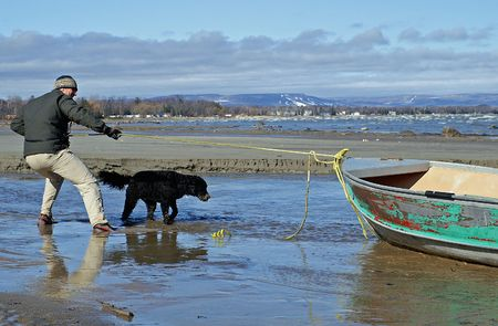 Beachcomber pulls an old fishing boat ashore with the help of his Portuguese Water Dog.