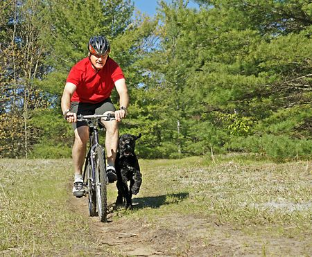 Man and his best friend - a Portuguese water dog - out for a bike ride in Wasaga Beach Provincial Park Stock Photo