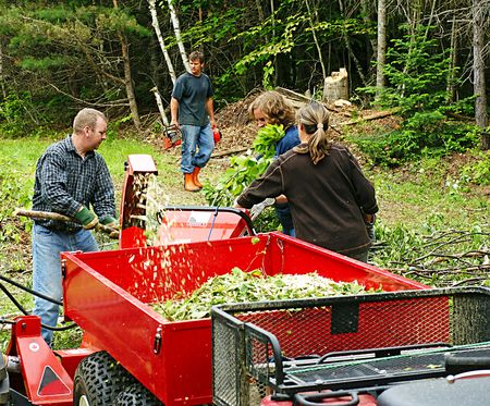 Team at work clearing trees on a hobby farm in New Brunswick Stock Photo