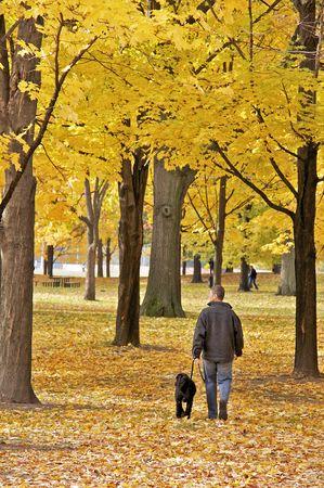 A Walk in High Park, Toronto