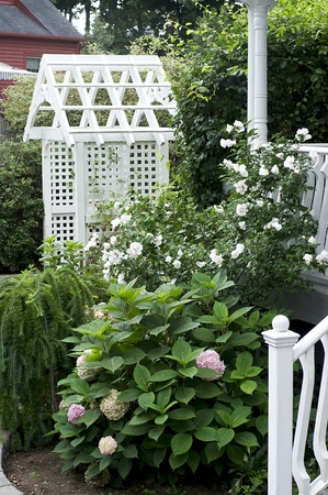 White Arbor surrounded by garden plants in a residential landscape Stock Photo