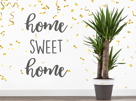 Plant, home, sweet, home, text, happy, new, home Stock fotó