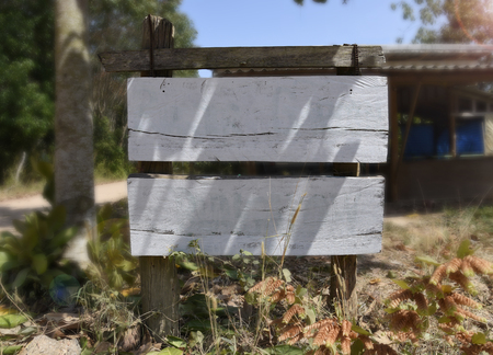 Two wooden white empty sign boards in the nature with space for own text