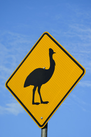 cassowary: Cassowary warning sign in North Queensland, Australia Stock Photo