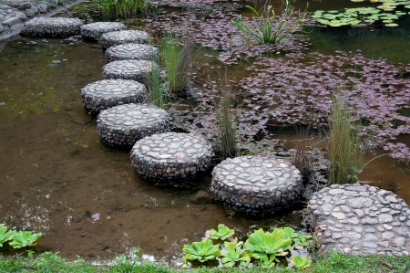 stepping on: stepping stone in garden