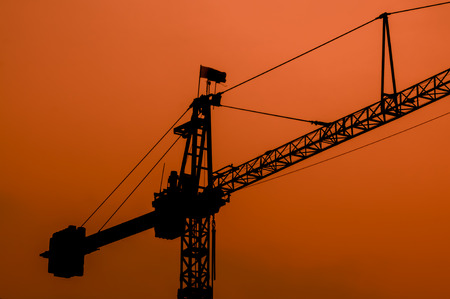 Crane Silhouette and sunset light background photo