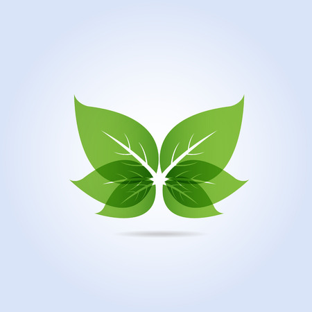 Green Leaf Symbol Butterfly Shape Vector Illustration Vector