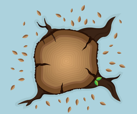 cut logs: top view of tree stump with dry leaves and two new leaf vector illustration