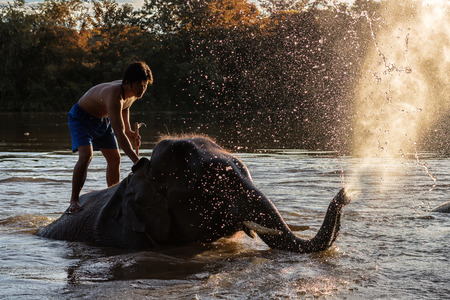 KANCHANABURI,THAILAND - SEPTEMBER 3,2017:The bathing elephants. At the River Kwai in the evening. In CHANG PUAK CAMP Kanchanaburi, Thailand Imagens - 90572811