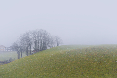 Snow is falling in the countryside of Europe.