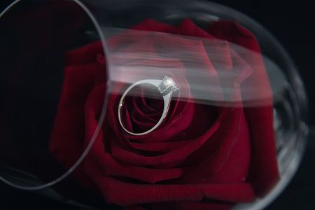Wedding rings and roses in a glass of wine. Stock Photo