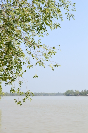 chachoengsao: Bangprakong river,chachoengsao