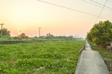 klong: Waterfront walkway Klong Preng