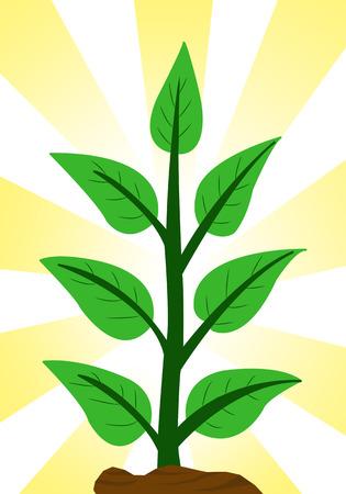 green tree cartoon 版權商用圖片