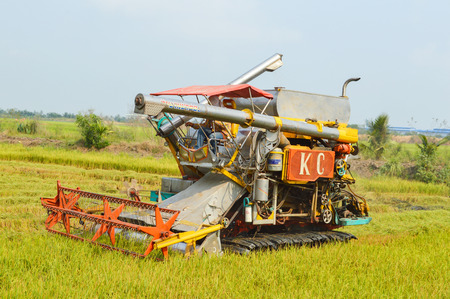 harvesters in the field of Thailand