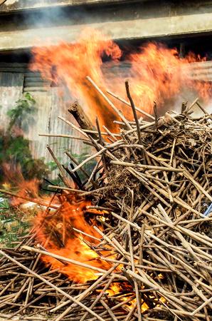 burning wood  photo