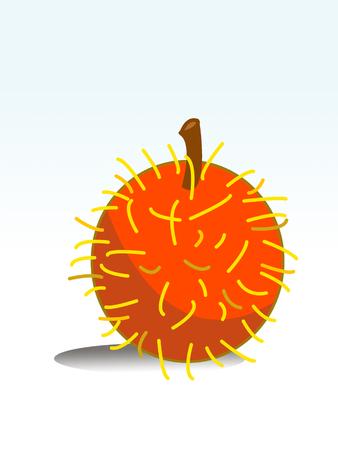 rambutan: cartoon rambutan fruit Stock Photo