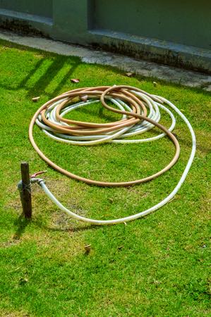 rubber tube in garden  Reklamní fotografie