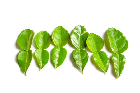 kaffir: Kaffir lime leaves  Stock Photo