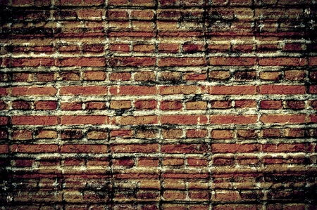 rough: Brick wall background