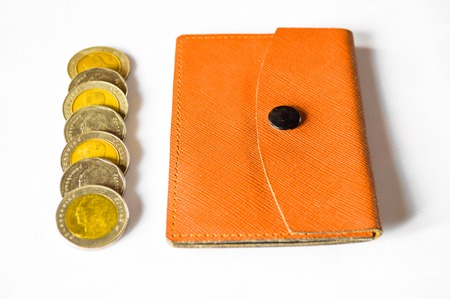 argent: Money and bag on white background Stock Photo