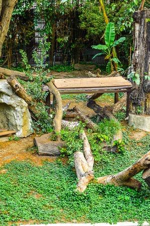garden in the zoo