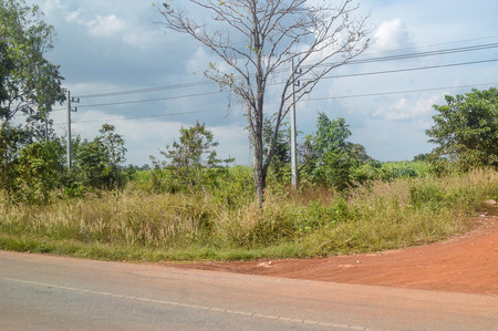 roadside in country thailand