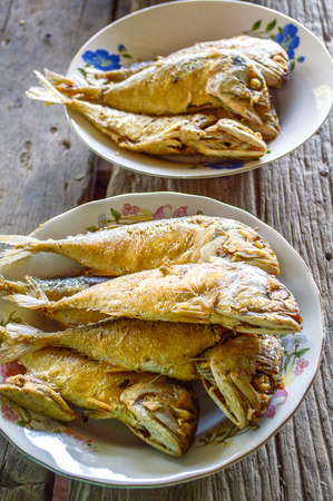 Mackerel fish fried