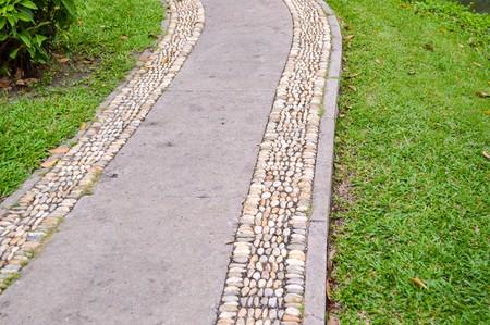 stone pathway in garden