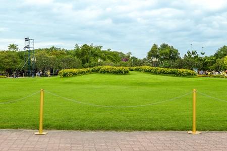green grass in Suan Luang Rama IX garden