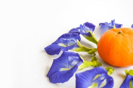 pigeon pea: blue Butterfly pea flower and orange on white backoground
