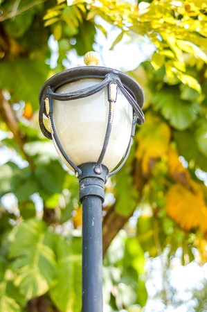 lamp on the pole: electric lamp pole in garden