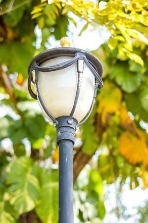 electric lamp pole in garden