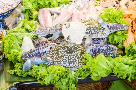 blue swimmer crab: Blue crab fresh seafood Stock Photo