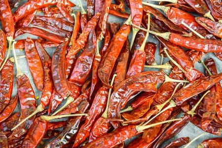 dry red chili photo