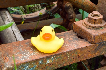 Yellow Plastic Duck Doll On Rust Steel Stock Photo, Picture And ...