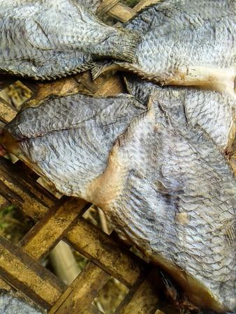 nile tilapia: pesce salato tilapia secca Nile (Thailandia cibo crudo) Archivio Fotografico