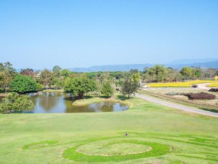 grass garden in Prachin Buri, Thailand Фото со стока